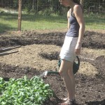 Carrboro's community garden: a growing concern