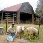 Hogan's Magnolia View Farm joins Farm Tour